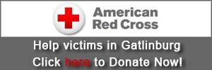 American Red Cross Help Hard Code Link